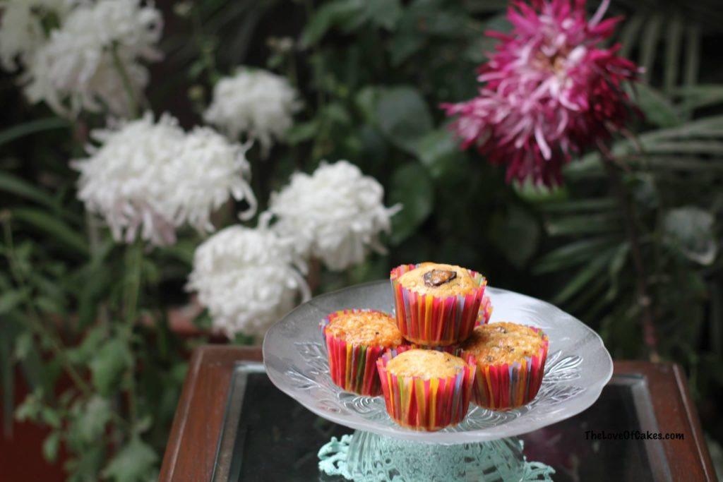 Orange Dark Chocolate Muffins