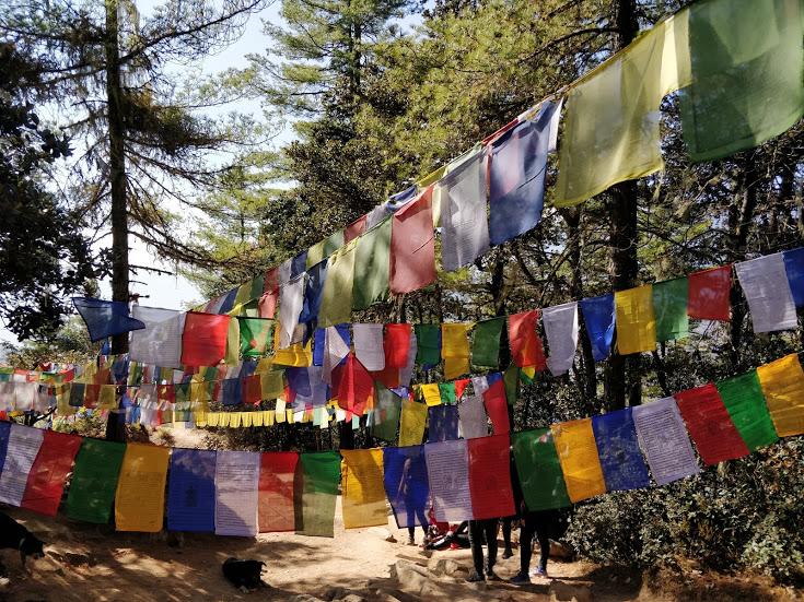 Prayer Flags on Tiger's Nest trek
